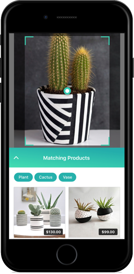 Search And Buy Visual Commerce ViSenze