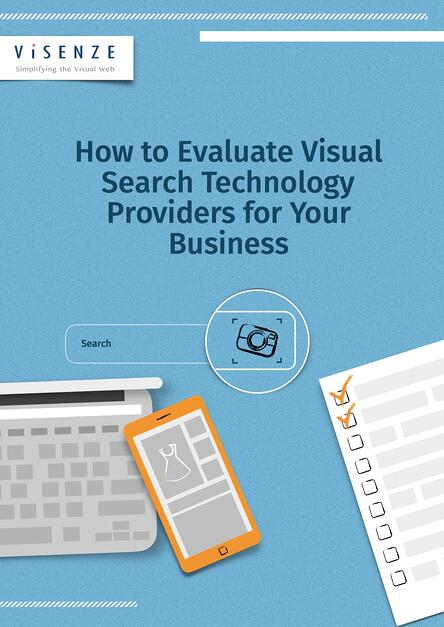how to evaluate visual search technology providers for your business